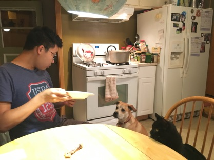 Jagaa at home with Loki and Cooper.